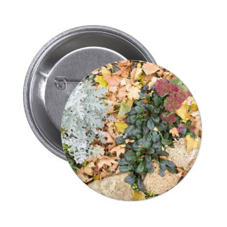 Top view of the autumn flowerbed 6 cm round badge