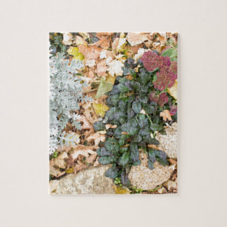 Top view of the autumn flowerbed jigsaw puzzle