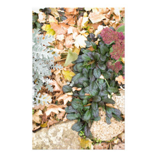 Top view of the autumn flowerbed stationery paper