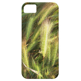 Top view of the dry spikes on the lawn case for the iPhone 5