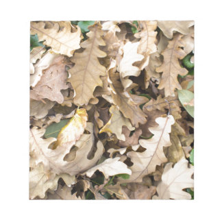 Top view of the fallen oak leaves closeup notepad