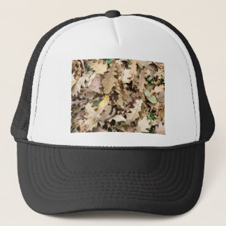 Top view of the fallen oak leaves closeup trucker hat