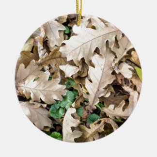 Top view of the fallen oak leaves round ceramic decoration