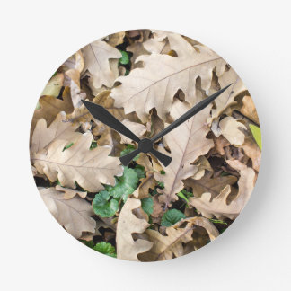 Top view of the fallen oak leaves round clock