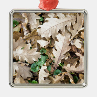 Top view of the fallen oak leaves Silver-Colored square decoration