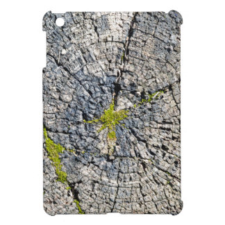 Top view of the texture of an old wooden stump iPad mini cover