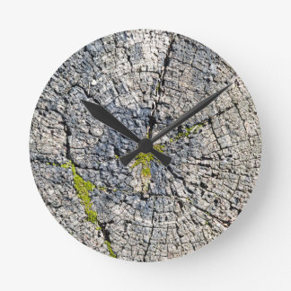 Top view of the texture of an old wooden stump round clock