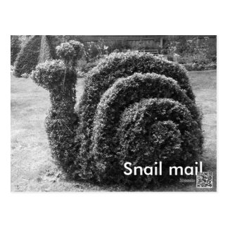 Topiary garden snail mail black & white post card. postcard