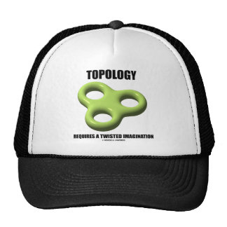 Topology Requires A Twisted Imagination Toroid Mesh Hats