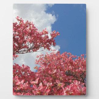 Torrent of Blossoms Plaque