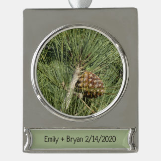 Torrey Pine Closeup California Tree Silver Plated Banner Ornament