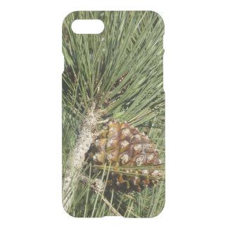 Torrey Pine Closeup iPhone 8/7 Case
