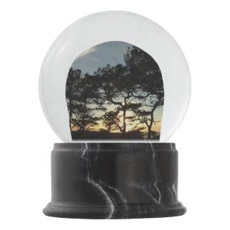 Torrey Pine Sunset II California Landscape Snow Globe