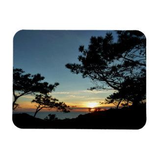 Torrey Pine Sunset III California Landscape Magnet