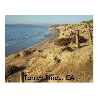 Torrey Pines, CA Postcard