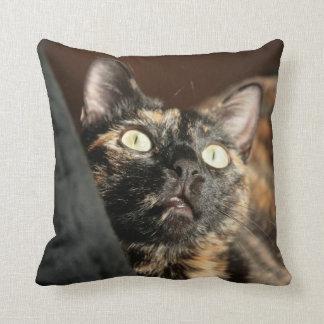 tortie cat pillow