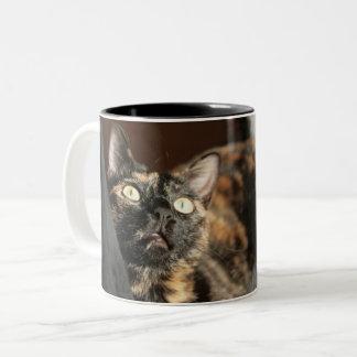 Tortitude mug - tortoiseshell cat
