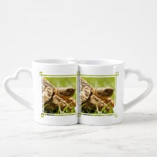 Tortoise Coffee Mug Set