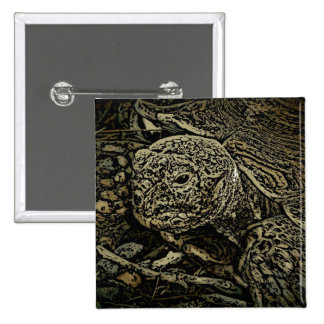 Tortoise decorative button