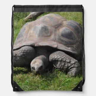 Tortoise on Grass Drawstring Bag