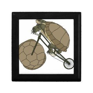 Tortoise Riding Bike W/ Tortoise Shell Wheels Small Square Gift Box