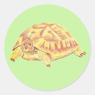 Tortoise sticker, turtle sticker