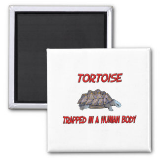 Tortoise trapped in a human body fridge magnet