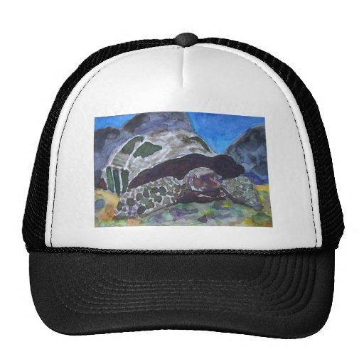 Tortoise turtle aquatic nature via watercolor aceo trucker hats