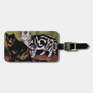 Tortoiseshell and Silver Tabby Cats Luggage Tag