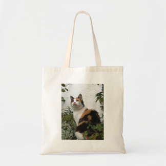 Tortoiseshell and White Cat Tote Bag