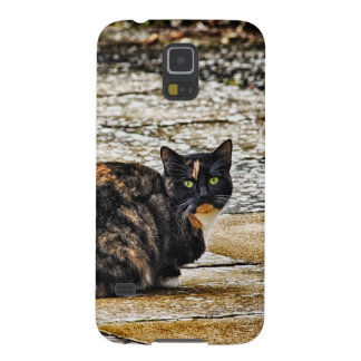 Tortoiseshell Cat Cases For Galaxy S5