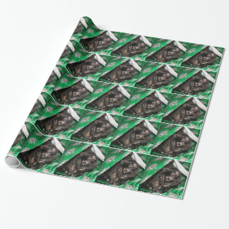 Tortoiseshell cat Christmas Wrapping Paper