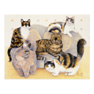Tortoiseshell ladies postcard