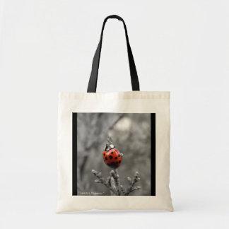 Totable Art by Metaphorphosis ~ lady bug