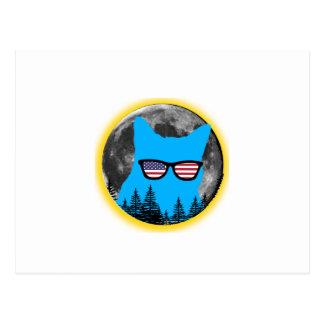 Total Solar Eclipse 2017 Funny Cat eclipse Postcard