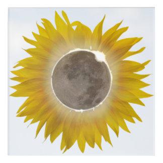 Total Sunflower Eclipse Stunning Acrylic Print 1