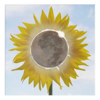 Total Sunflower Eclipse Stunning Acrylic Print 3