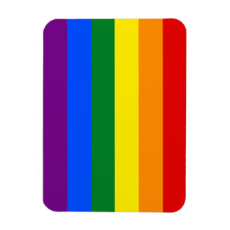 Totally Gay Pride Flag Magnet