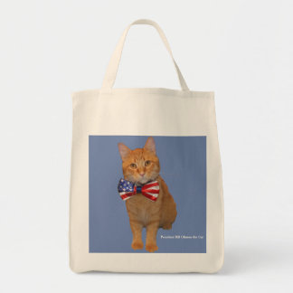 Totes Awesome! Mister President handy tote bag!