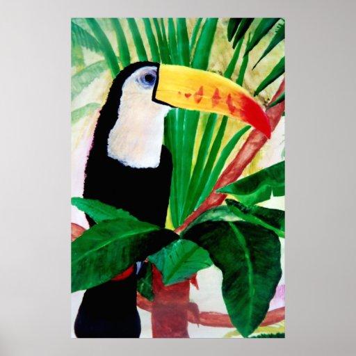 Toucan Amazon Jungle Exotic Wildlife Bird Poster