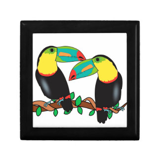 Toucan bird love art gift box