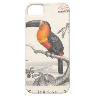Toucan Bird Responsible Travel Art iPhone 5 Cover