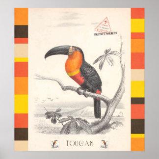 Toucan Bird Responsible Travel Art Poster