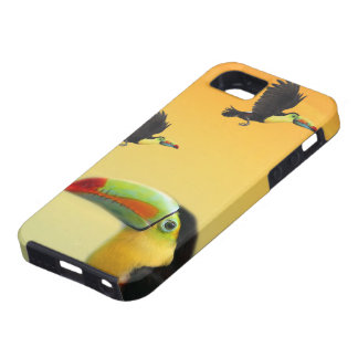 Toucan Birds Tough iPhone 5 Case
