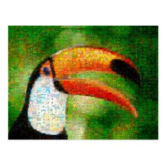 Toucan collage-toucan  art - collage art postcard