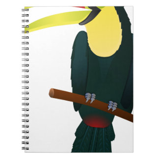 Toucan Drawing Notebooks