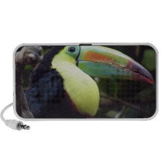 Toucan ipad iphone computer speakers