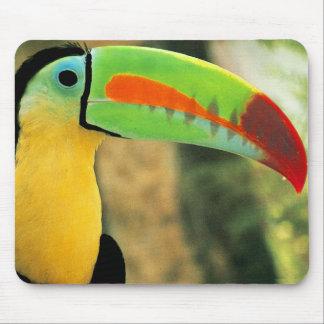 Toucan Mousepad