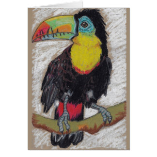 Toucan sketch greeting card by Nicole Janes