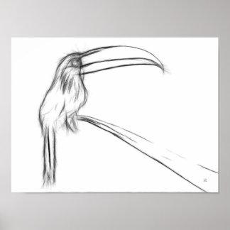 Toucan Sketch Poster